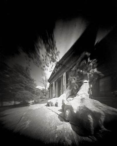pinhole of lion 4x5 1
